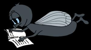 FLY liegend mit Buch